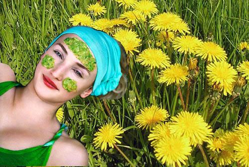 Травы в косметике для лица